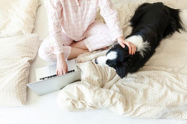 Mobilne biuro w domu. młoda kobieta siedzi na łóżku z zwierzę domowe psem pracującym w piżamie używać na laptopu komputeru osobistego komputerze w domu. styl życia dziewczyna studiuje w pomieszczeniu. niezależny biznes koncepcja kwarantanny.