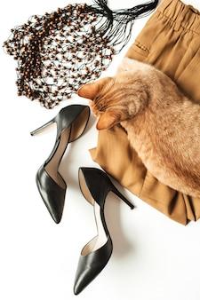 Moda damska ubrania, akcesoria, ładny piękny kotek imbir na białym tle. płaski, minimalistyczny modny kolaż z widokiem z góry. spodnie, buty na obcasie, worek na sznurki