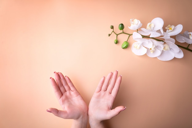 Moda, kobiece dłonie z manicure, pielęgnacja paznokci, białe kwiaty orchidei, zdrowa skóra i naturalne kosmetyki. widok z góry kontrastujący z pudrowym tłem.