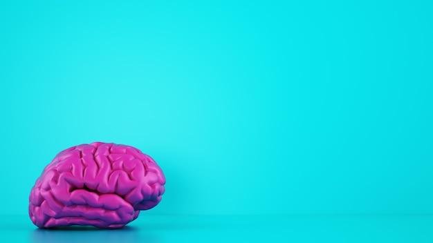 Model 3d mózgu w kontraście koloru z tłem