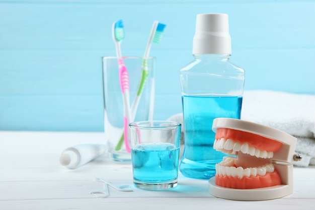 Model dentystyczny zębów i produktów do pielęgnacji zębów na kolorowym tle