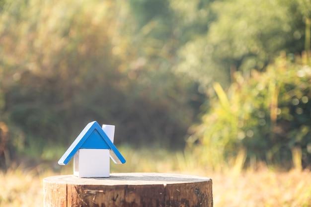 Model domu