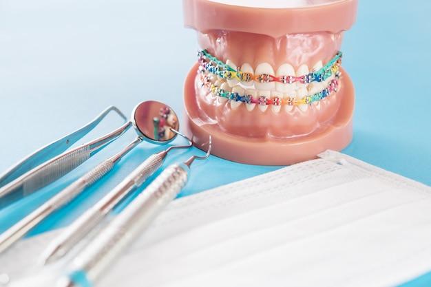 Model ortodontyczny i narzędzie dentystyczne