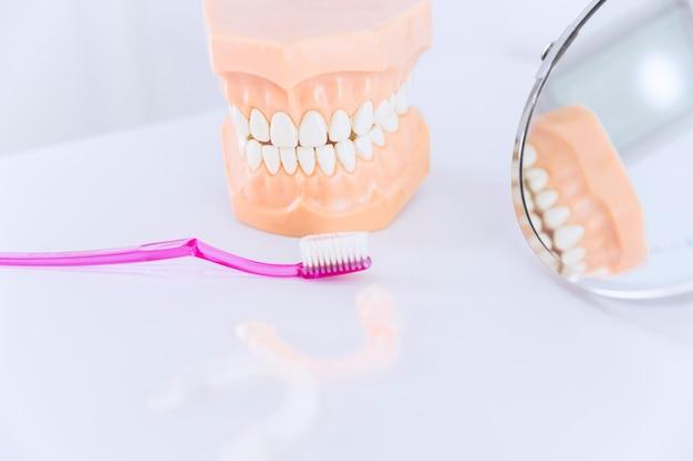 Model zęba ze szczoteczką do zębów; lustro i aligner zębów na stole