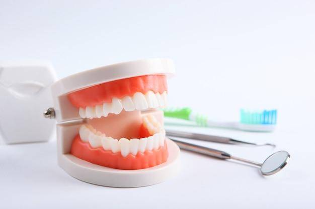 Model zębów i narzędzi dentystycznych oraz produktów do pielęgnacji zębów