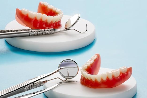 Model zębów przedstawiający model mostu korony implantu / demonstrację dentystyczną badanie zębów uczy modelu.