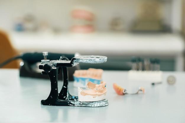 Model zębów wykonany z gipsu szczęki dla techników dentystycznych