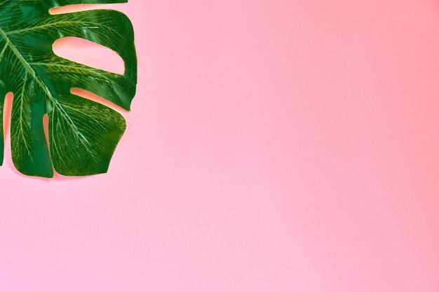 Modny zielony tekstylny liść monstera na różowo.