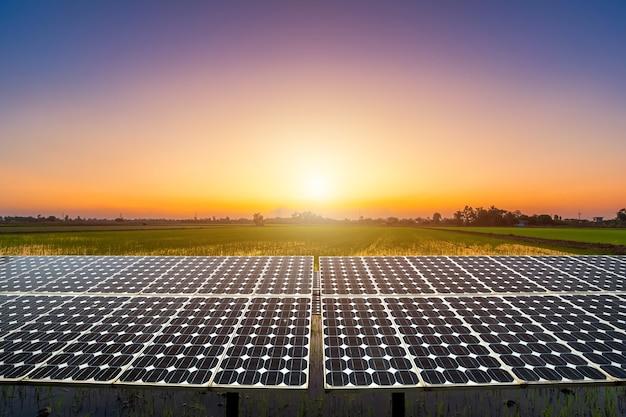 Moduły fotowoltaiczne elektrownia słoneczna z widokiem na zielone pole kukurydzy i złoty ryż z wieczorem niebieskim tle dramatycznego nieba zachód słońca, koncepcja alternatywnej energii.