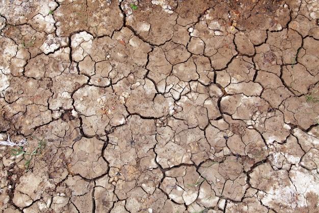 Mokra popękana ziemia wypełniająca ramę