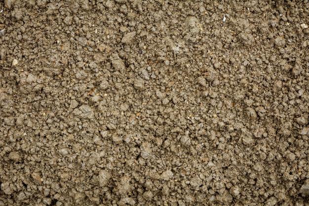 Mokra tekstura gleby. - rocznika tło.