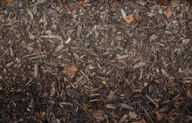 Mokre trociny tekstura tło. strzał zbliżeniowy