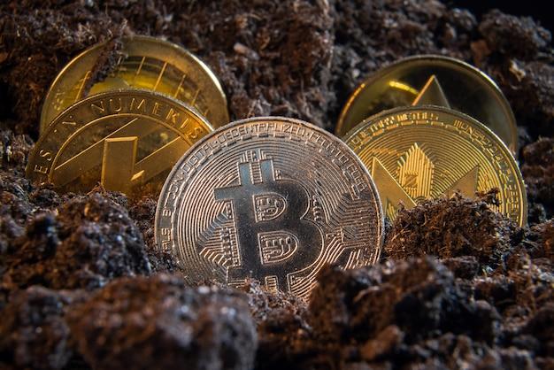 Moneta kryptowaluty na ziemi z bitcoinem z przodu.
