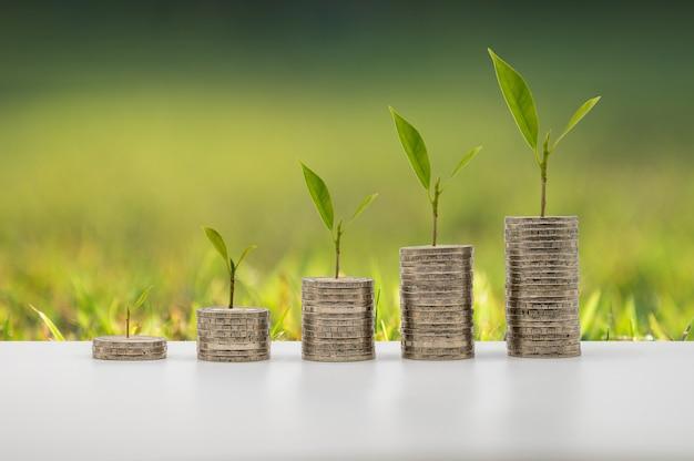 Monety gromadzą się w kolumnie wraz ze wzrostem drzew, które reprezentują pomysł na oszczędzanie pieniędzy lub planowanie finansowe dla gospodarki.