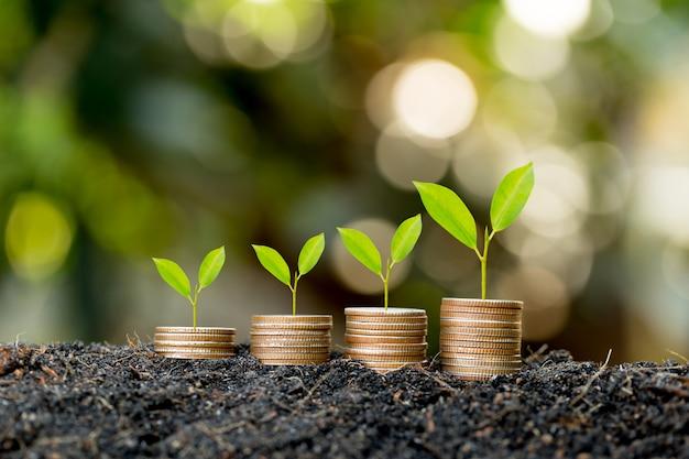 Monety są ułożone na ziemi, a sadzonki rosną na wierzchu, koncepcja oszczędzania pieniędzy oraz rozwój finansowy i biznesowy.