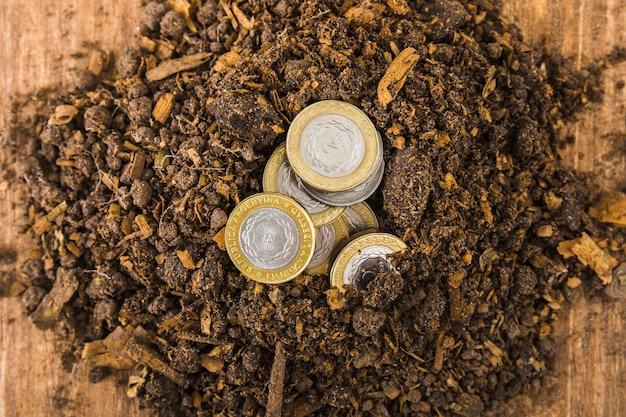 Monety w ziemi na stole