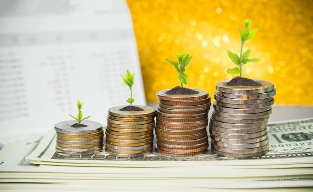 Monety z młodej rośliny na stole z tłem zamazującym pieniądze.
