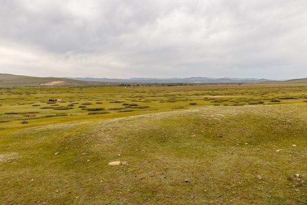 Mongolski step na tle pochmurnego nieba