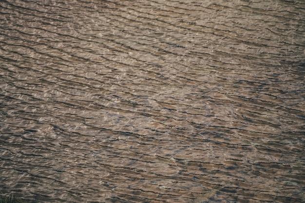 Monochromatyczna tekstura złotej spokojnej wody jeziora. medytacyjne fale na słonecznej powierzchni wody. natura minimalne tło złote jezioro w słońcu. naturalne tło czystej wody. fragment jeziora słońca.