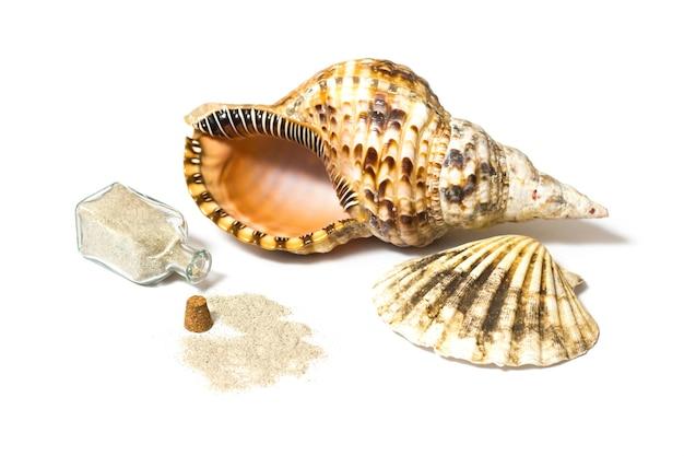 Morskie muszle i skład otwartej butelki z piaskiem w studio na białym tle