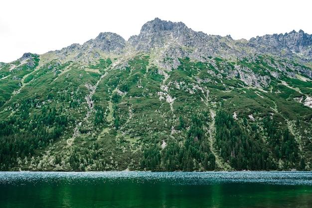 Morskie oko alpejskiego jeziora latem w polsce