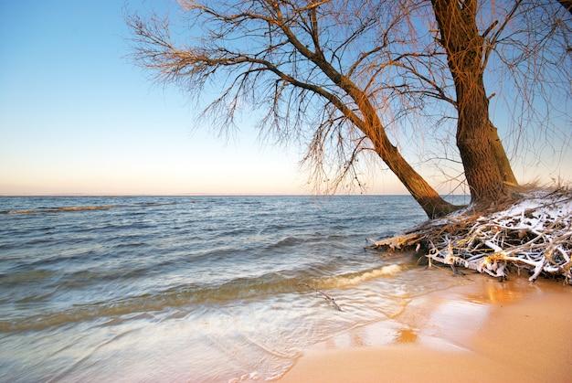 Morze i zima