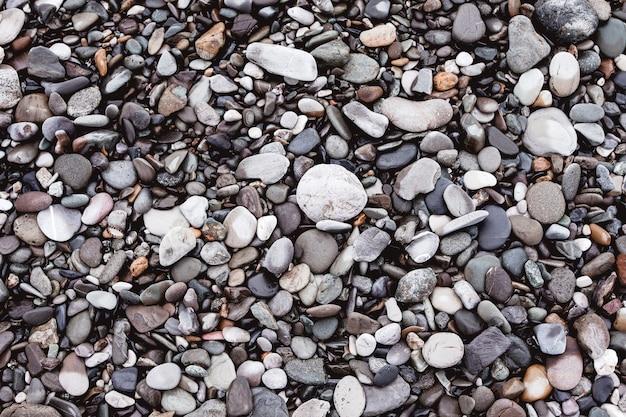 Morze mokre kamienie na wybrzeżu