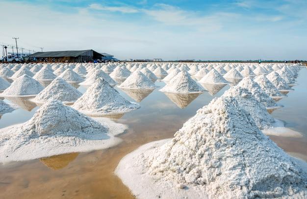 Morze soli gospodarstwo rolne i stajnia w tajlandia. organiczna sól morska. surowiec soli przemysłowej. chlorek sodu. system parowania słonecznego. źródło jodu. pracownik pracujący w gospodarstwie rolnym.