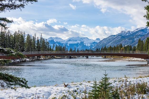 Most dla pieszych w banff i szlak bow river w śnieżną jesień park narodowy banff canadian rockies