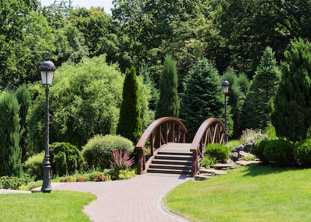 Most i rośliny w parku