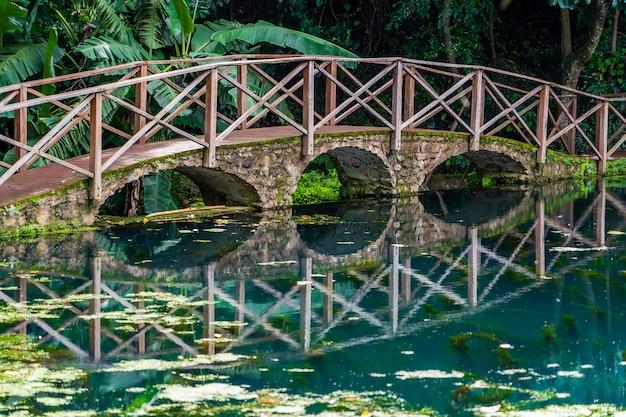 Most łukowy na jeziorze z odbiciem, tanzania, afryka. kładka nad stawem