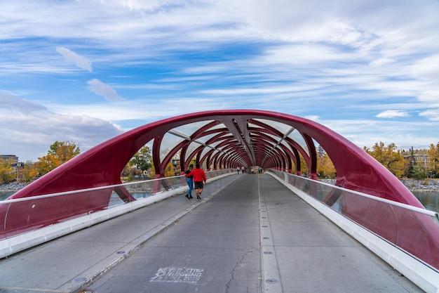 Most pokoju na prince's island park. jesienne liście w centrum rzeki calgary bow, alberta, kanada.