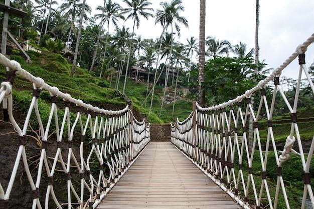 Most wiszący, centralny widok od wewnątrz.