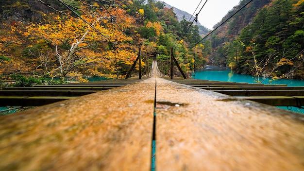 Most wiszący yume no tsuribashi na szmaragdowej rzece jesienią w sumatakyou