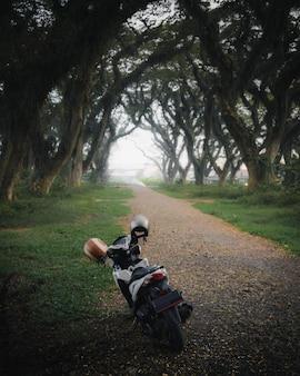Motocykl na poboczu drogi w parku