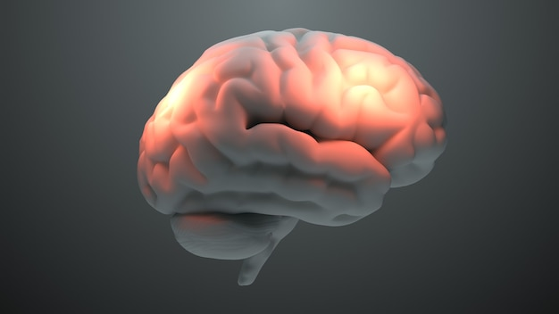 Motyw medyczny 3d renderuje mózg z pomarańczowymi strefami, które symbolizują uszkodzenie lub ból. koncepcja strefy bólu głowy. aktywacja strefy inteligencji mózgu.