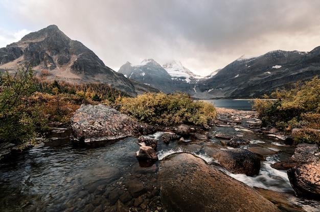 Mount assiniboine z wodą płynącą w złotej dziczy w prowincjonalnym parku