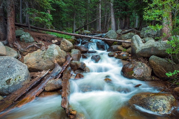 Mountain stream colorado