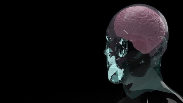 Mózg wewnątrz kryształowej głowy do renderowania 3d treści edukacyjnych lub naukowych