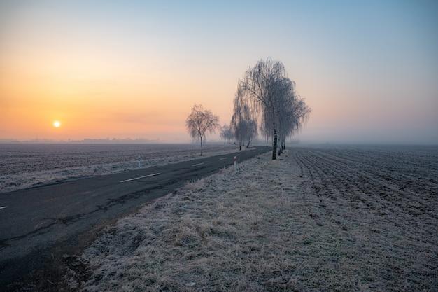 Mroźny jesienny poranek o wschodzie słońca. droga prowadzi z natury do miasta. droga do pracy