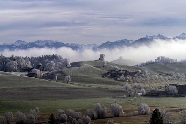 Mrożone szwajcarskie farmy