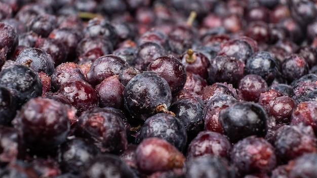 Mrożone winogrona z bliska, sezonowe tło jagodowe.