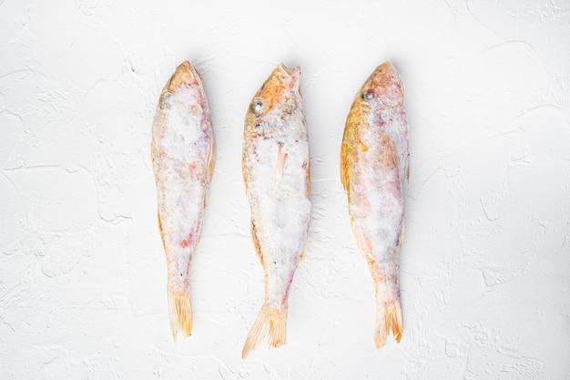 Mrożony zestaw surowych ryb barweny lub barabulka, na białym tle kamiennego stołu, widok z góry płaski lay