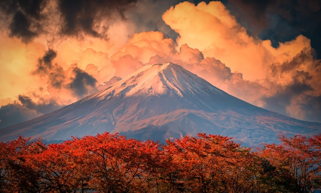 Mt. fuji na tle niebieskiego nieba z liści jesienią w ciągu dnia w fujikawaguchiko, japonia.