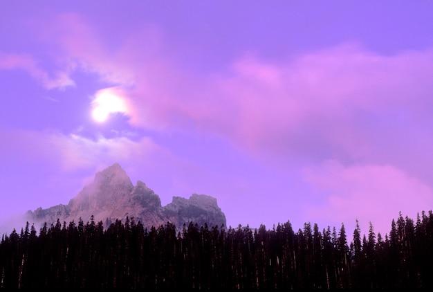 Mt. rainier's snowy peak