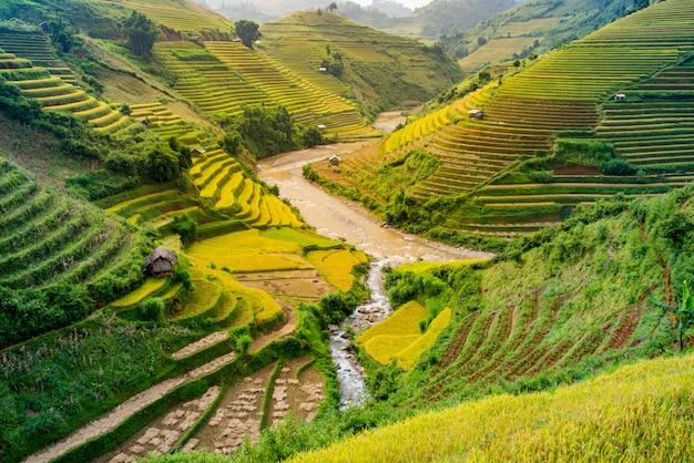 Mu cang chai, krajobraz pola ryżu tarasowego w pobliżu sapa, północny wietnam