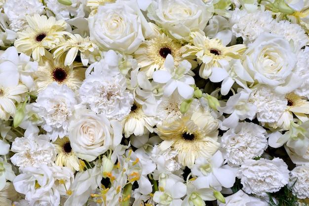 Multi kwiat na ścianie