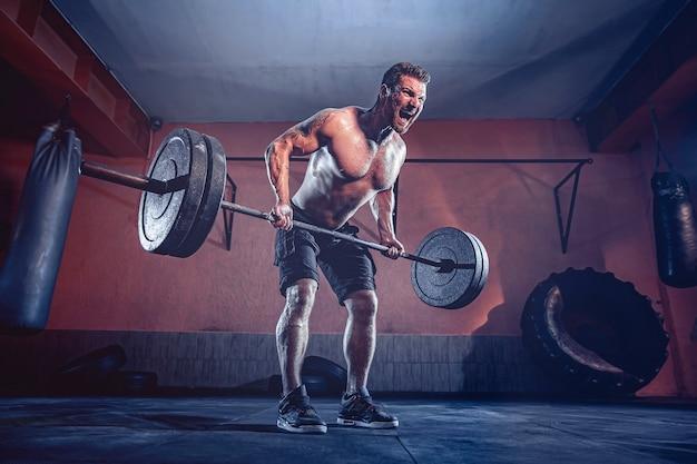 Muskularny brodacz poćwiczyć w siłowni, ćwiczyć, silny męski brzuch nagi tułowia.