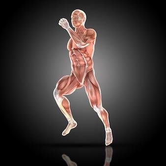 Muskularny mężczyzna biegnie