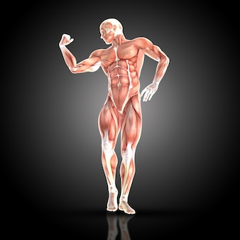 Muskularny mężczyzna ściskając biceps